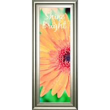 """Shine Bright Daisy"" By Susan Bryant Framed Print Wall Art"