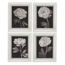 4 Pc Black and White Flowers