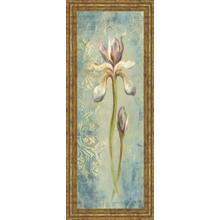 """Floral XI"" By Lee Hazel Framed Print Wall Art"