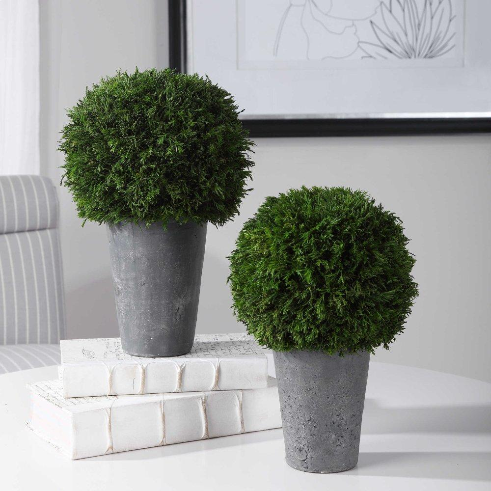 Cypress Globes, S/2