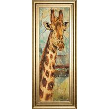 """New Safari On Teal I"" By Patricia Pinto Framed Print Wall Art"