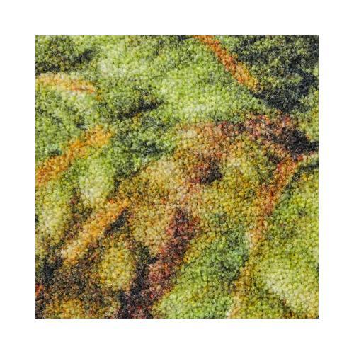 Mohawk - Verde Palm Border, Green- Rectangle