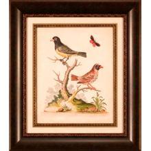 Edward Bird Pairs I