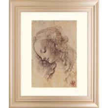 Testa Di Donna Di Profilo By Leonardo Da Vinci