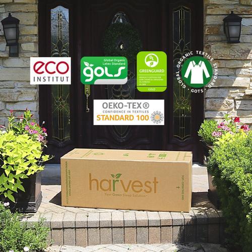 Harvest Green Mattress - Harvest Green Essentials - Queen