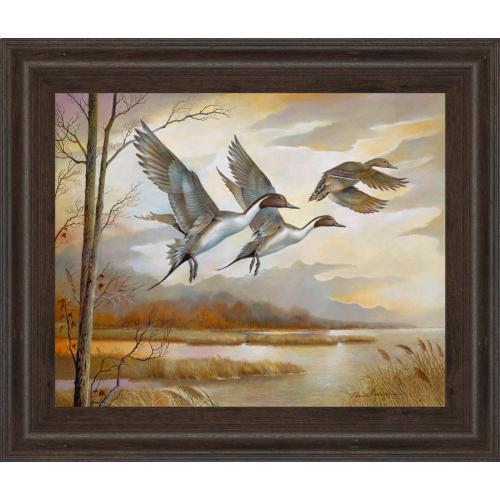 """""""Pintails Framed Print Wall Art"""