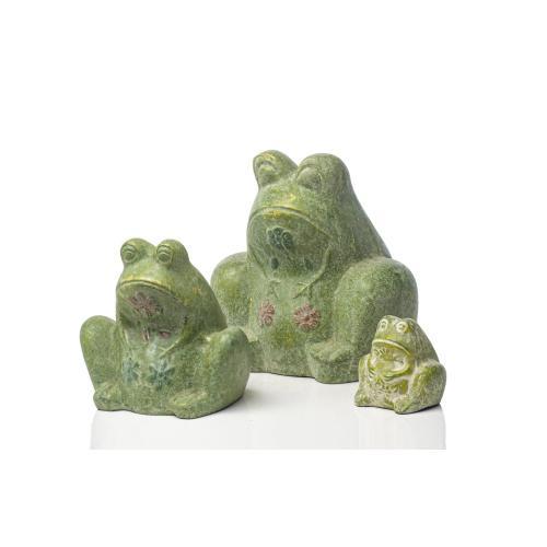 Small Senora Frog