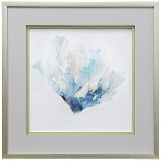Blue Coral Reef II  30in X 30in  Shadowed Framed Print Under Glass