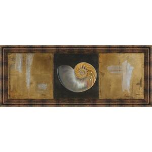 """Seashells Il"" By Patricia Pinto Framed Print Wall Art"