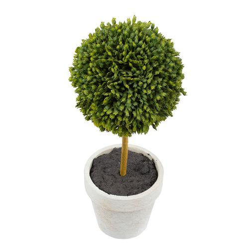 S/3 Potted Boxwood Topiaries
