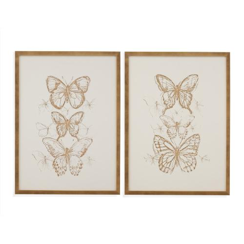 2 Pc Butterfly Sketch
