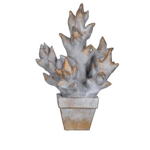 Crestview Collections - Succulent Pot Culture