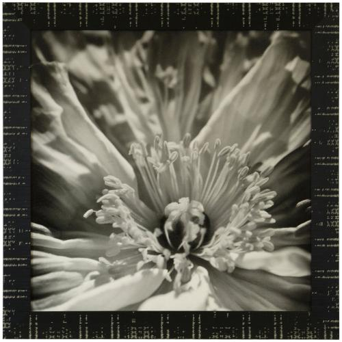 Style Craft - INNER BEAUTY  36in X 36in  Made in the USA  Textured Framed Print