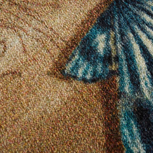 Mohawk - Tide Pool Shells, Sand- Rectangle