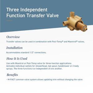 Doux matte black transfer valve trim