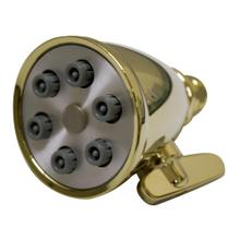 Showerhaus Small Round Showerhead with 6 Spray Jets - Solid Brass Construction with Adjustable Ball Joint - Polished Brass