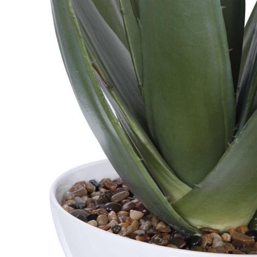 Uttermost - Evarado Aloe Planter