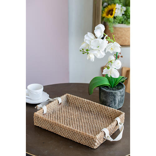A & B Home - Decorative Tray