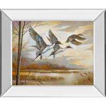 """See Details - """"Pintails Mirror Framed Print Wall Art"""