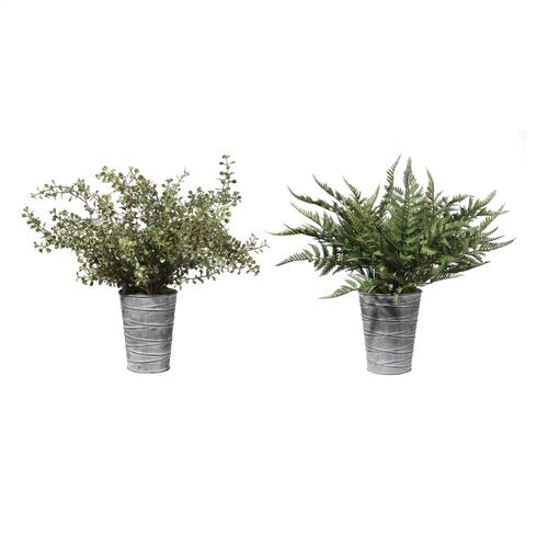 Quimby Potted Ferns S/2