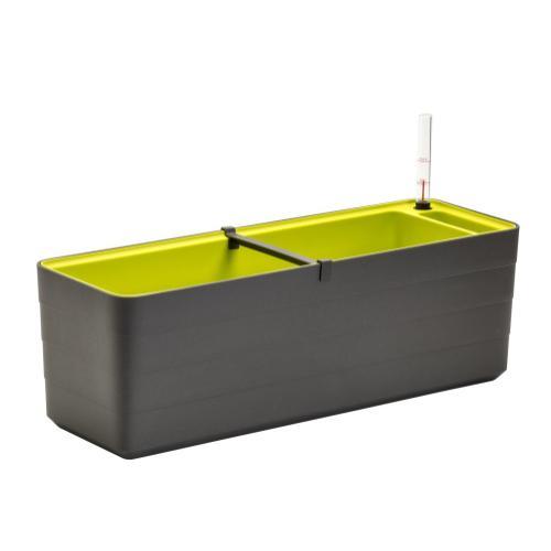 """Urbalive Berberis 23.75"""" Self Watering Plant Box (Min Qty2)"""