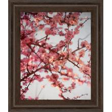 """Cherry Blossoms I"" By Susan Bryant Framed Print Wall Art"