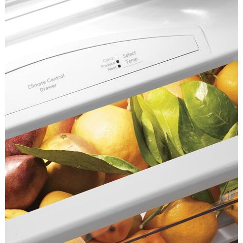 "GE Profile™ Series 48"" Smart Built-In Side-by-Side Refrigerator with Dispenser"