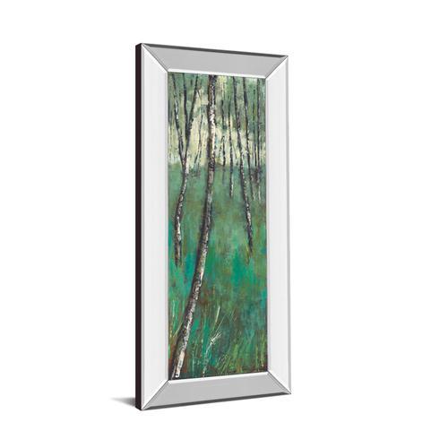 "Classy Art - ""Nature Companion Il"" By Solis Mirror Framed Print Wall Art"