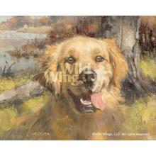 """View Product - Happy Dog-Golden Retriever - Limited Edition Print 12""""H x 15""""W"""