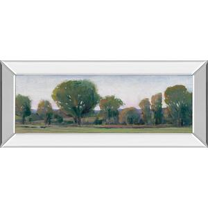 """Panoramic Treeline Il"" By Tim Otoole Mirror Framed Print Wall Art"