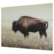 Brutus Wall Art Product Image