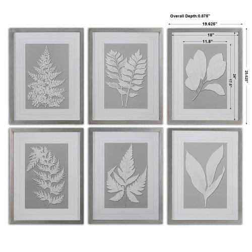 Uttermost - Moonlight Ferns Framed Prints, S/6