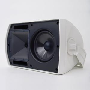 KlipschAW-650 Outdoor Speaker - Custom - White