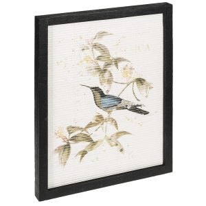 Framed Hummingbirds with Flowers (3 pc. ppk.)