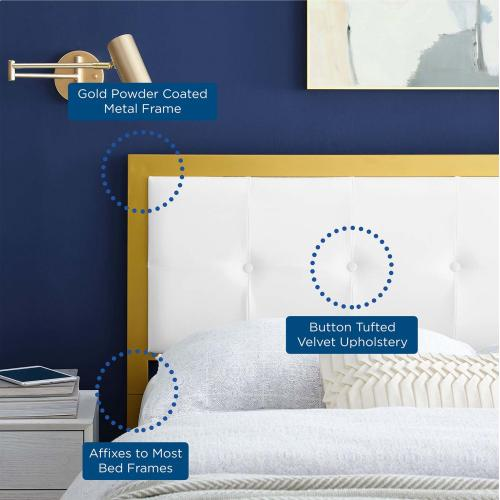 Modway - Teagan Tufted Twin Performance Velvet Headboard in Gold White