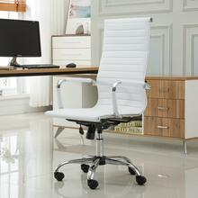 Panoton Chromel Contemporary High Back Office Chair, White