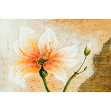 """See Details - Surya Wall Decor HPO-5021 24""""H x 36""""W"""