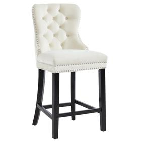 Rizzo 26'' Counter Stool, set of 2 in Ivory