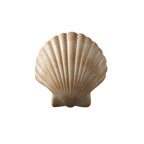 ADA Scallop Shell
