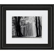 """""""Winter Is Coming"""" By Lars Van De Goor Framed Print Wall Art"""