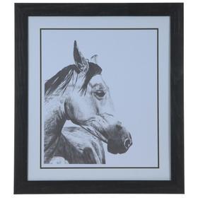 """""""HORSE SNAPSHOT 2"""""""