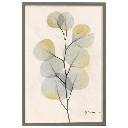 Style Craft - Sunkissed Eucalyptus IV  Made in USA  Artist Print  Faux Wood Frame Under Glass  Attached Hangin