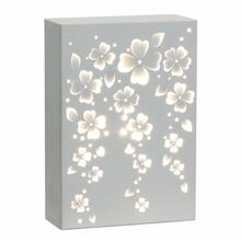 Decorative Light Box