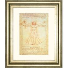 Vituvian Man By Leonardo Da Vinci