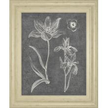 """Eden Springs 2 Gray"" By Wild Apple Portfolio Framed Print Wall Art"