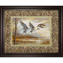 Pintails By Ruanne Manning ***monl***