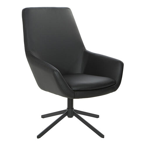 Modern Scoop Design Chair