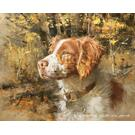 "Buck-Brittany Spaniel - Limited Edition Print 12""H x 15""W Product Image"