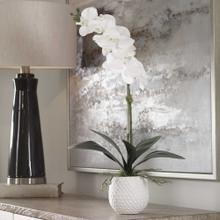 Cami Orchid