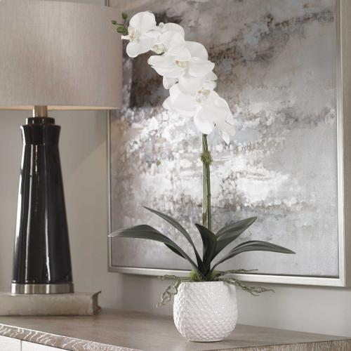 Uttermost - Cami Orchid